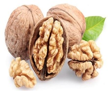 walnut and walnut kernels for sale