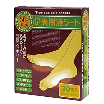 Japanese Sap Sole Health Sheet / Detox Foot Patches Reflexology Detox Pads