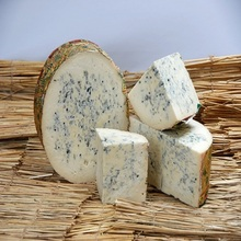 Italian Gorgonzola Cheese