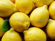 Cheap Lemon