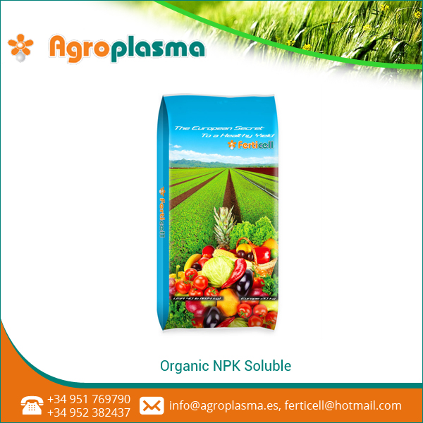 Natural NPK Soluble Organic Fertilizer at Attractive Price