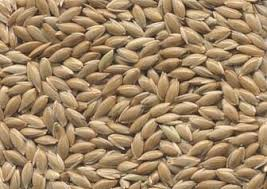 Canary Seed and Bird Mix Seed