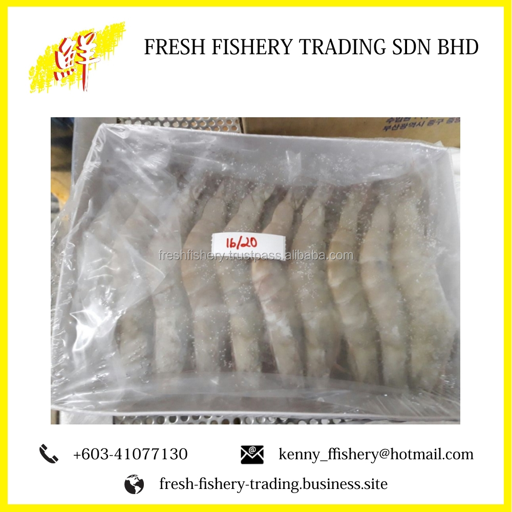 Frozen Vannamei Prawn Shrimp Price