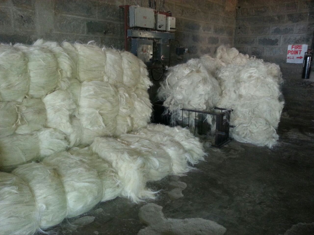 Natural Top Grade Sisal Fiber For Sale