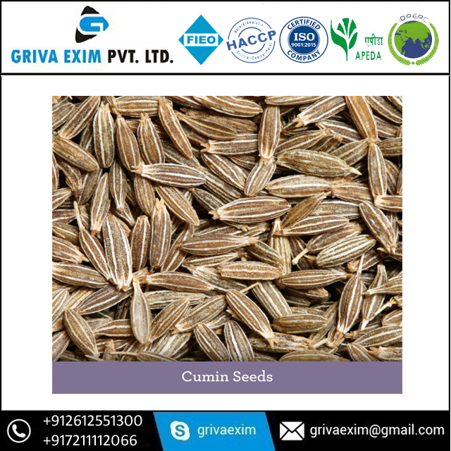 Ready Stock For Export Of Cumin Seed