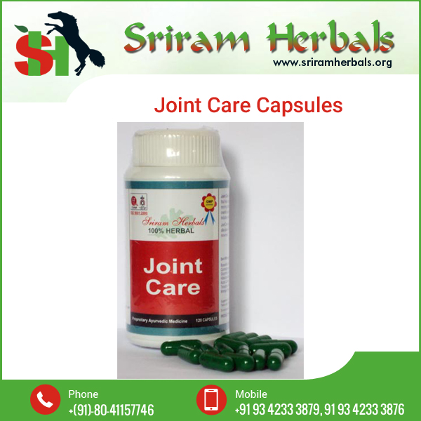 Herbal Supplements Knee Care Joint Health Arthritis Capsule