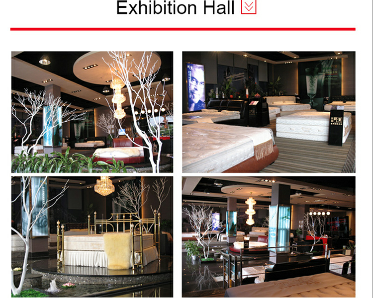 Home Furniture General Use Coconut Palm 100% Natural Latex 5 Star Used Hotel Mattress - Jozy Mattress | Jozy.net
