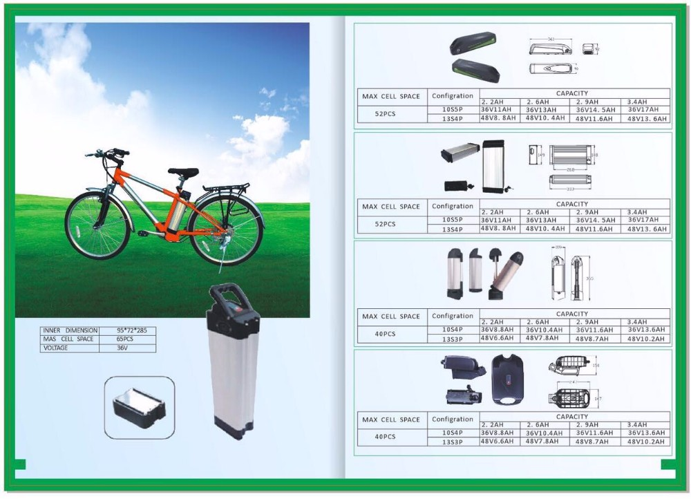 Factory price customized li ion e-bike battery 48v 36V 24V with BMS