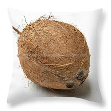 Coconut Supplier