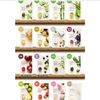 Innisfree It's REAL Squeeze Mask Sheet (16 types) 20ml x 10ea