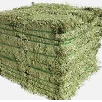 Quality ALFAFA HAY IN BALES, TIMOTHY HAY AND ALFAFA HAY PELLETS FOR SALE