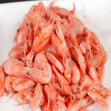 Prawns / Red Shrimps (Pleoticus Muelleri) Crude Frozen, with Skin, Seafrozen, Whole Round