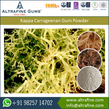 Kappa Carrageenan Gum Powder for Egg-less Food Products