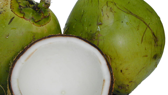 acceptability of avocado and young coconut