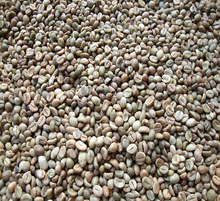 Toraja Robusta Green Coffee