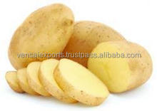 FRESH INDIAN POTATOES