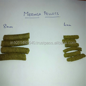 Moringa For Horse Supplements