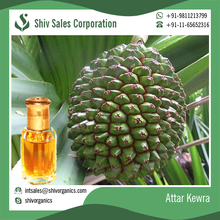 Wholesale Made from Kewda Arabian Kewra Attar Perfume Oil