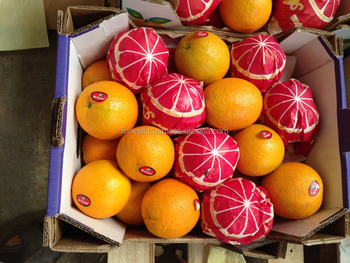 Good Quality New Crop This Year Round Supply Wholesale Price Fresh Orange