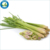 Lemongrass Oil for Skin, Hair and Aromatherapy Lemongrass Oil Price