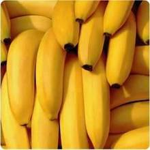 !!!Cheap Cavendish Banana For Sale !!!