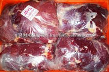 frozen Camel Meat