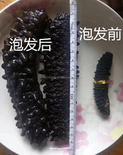 100% natural sun dried sea cucumber for wholesale