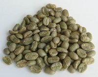 Arabica GREEN coffee beans and slim deliciously coffee