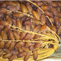 2018 High Quality Best Selling Dried Deglet Noor Dates For Sale
