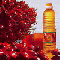 100 REFINED PALM OIL PALM OLEIN