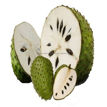 HOT PRODUCT FOR NOW WITH BEST PRICE, SOURSOP PULP, BEST FRUIT FOR HEALTH