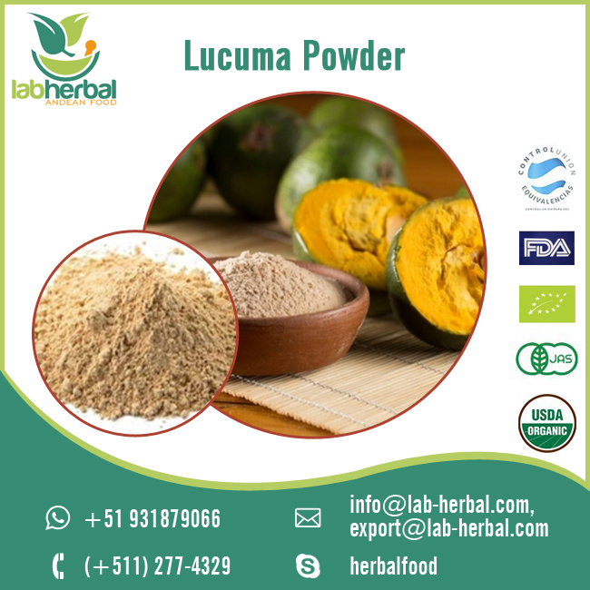 Wholesale Supply of Lucuma Powder from Leading Manufacturer at Low Rates