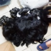 Unprocessed southeast asia human hair weft, raw asian virgin hair long hair braid,crochet braid hair