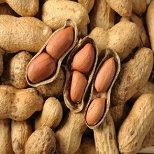 ton price hulled raw groundnuts peanuts for sale 9/11