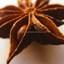 New season of dried spice and herb - star anise with excelent quality