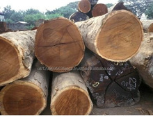 Red And White Sandalwood Logs/ Red Cedar Wood Timber prices. Place orders now,