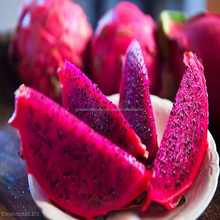 FRESH DRAGON FRUIT VERY GOOD PRICE