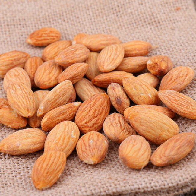 Best Quality Almond Nuts/ Apricot Kennel For Sale Availabe Stock