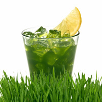 Healthy Wholesale Juices Aojiru Green Juice