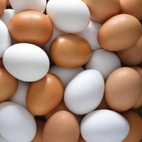 Best Quality Fresh Table Eggs For