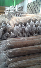 Coir Logs for Soil Conservation Protection