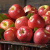 Pome Fruit Fresh Red Delicious Apple Premium Apple