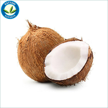 Anti-Microbial and Anti-Fungal Coconut Oil Easier To Digest Not Readily Stored As Fat Coconut Oil