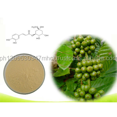 Best Price Green Coffee Bean Extract