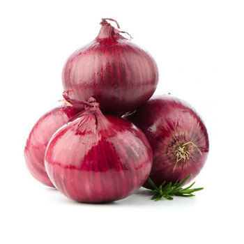 fresh red onion from india
