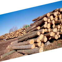 100 Kiln Dried Firewood For Sale