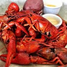 Best Quality Crawfish For Sell