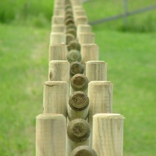 Machine rounded treated fencing poles