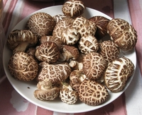 Dried/Canned/Fresh/Frozen Shiitake Mushroom