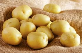 Fresh Holland potatoes/Fresh Potato/200-300g Fresh Premium Quality Potato
